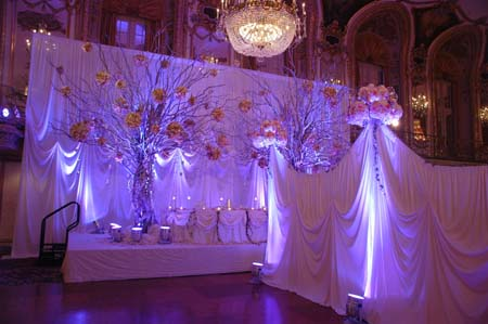 Wedding Backdrops and Wedding Event Lighting Chicago Illinois